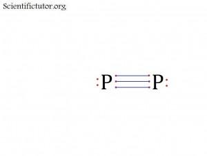 P2 Octet