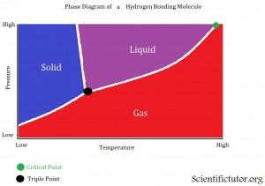 Phase Diagram Hydro